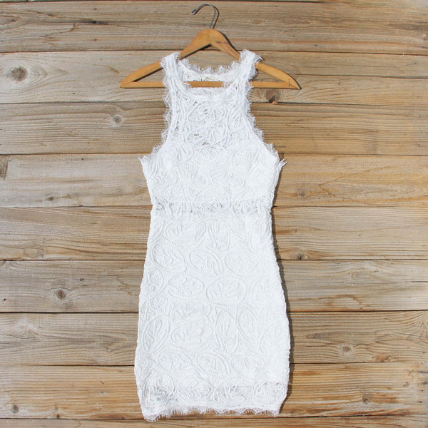 Eyelash Lace Dress: Featured Product Image