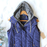 Forest Smoke Hooded Vest in Navy: Alternate View #2