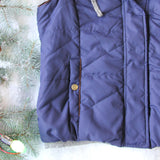 Forest Smoke Hooded Vest in Navy: Alternate View #3