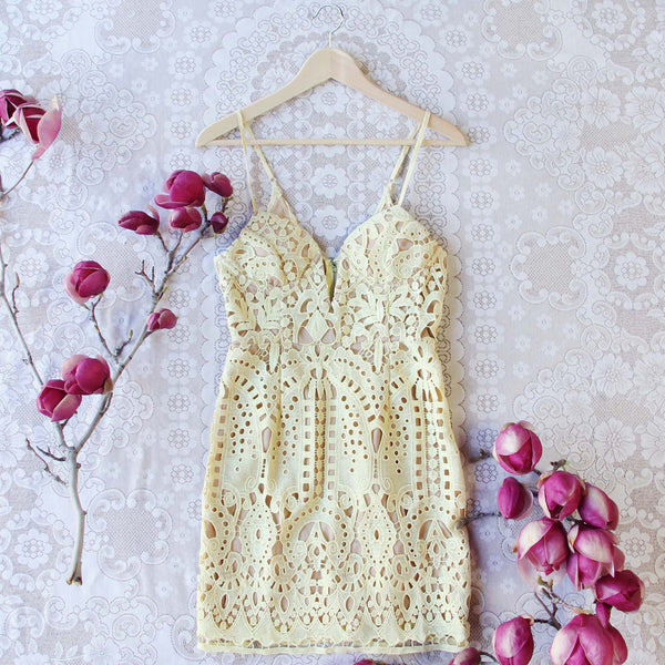 Fortune & Lace Dress: Featured Product Image