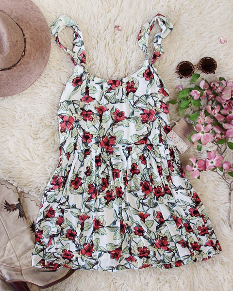 Free People Sweet You Minidress: Featured Product Image