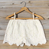 Honey Lace Shorts: Alternate View #3