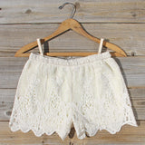 Honey Lace Shorts: Alternate View #1