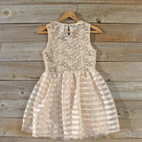 Lace Kiss Party Dress: Alternate View #4