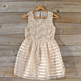 Lace Kiss Party Dress: Alternate View #1