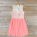 Neptune Lace Dress in Peach: Alternate View #1