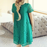 The Santa Clara Lace Dress in Green: Alternate View #5