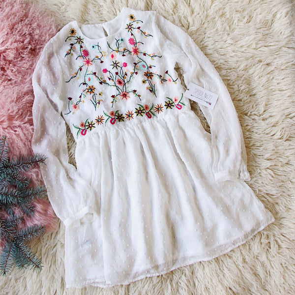 Snow Angel Embroidered Dress: Featured Product Image