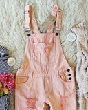 Soft + Destructed Overalls: Alternate View #1