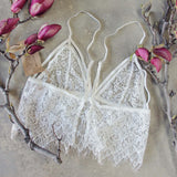 Tattings Lace Bralette: Alternate View #3