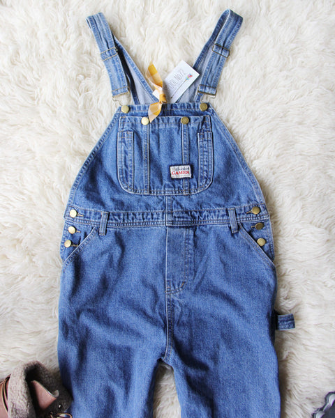 The Carpenter Overalls: Featured Product Image