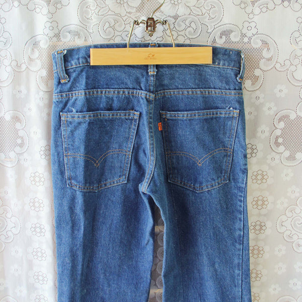 Vintage 70's Levi's Bell Bottoms: Featured Product Image