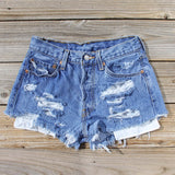 Vintage Distressed Shorts: Alternate View #1