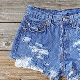Vintage Distressed Shorts: Alternate View #2