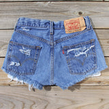 Vintage Distressed Shorts: Alternate View #3