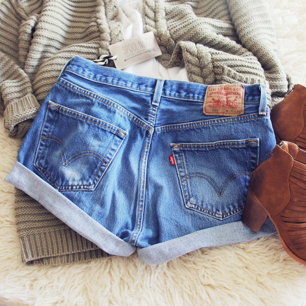 Vintage Cuffed Jean Shorts: Featured Product Image