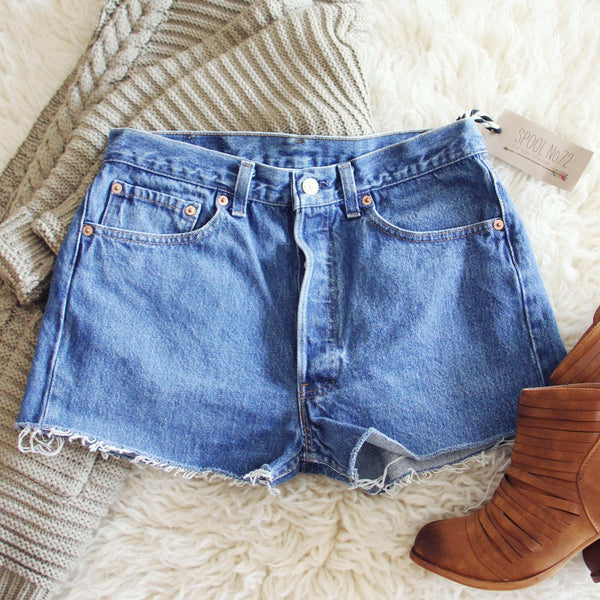 Vintage Cut-Off Jean Shorts: Featured Product Image