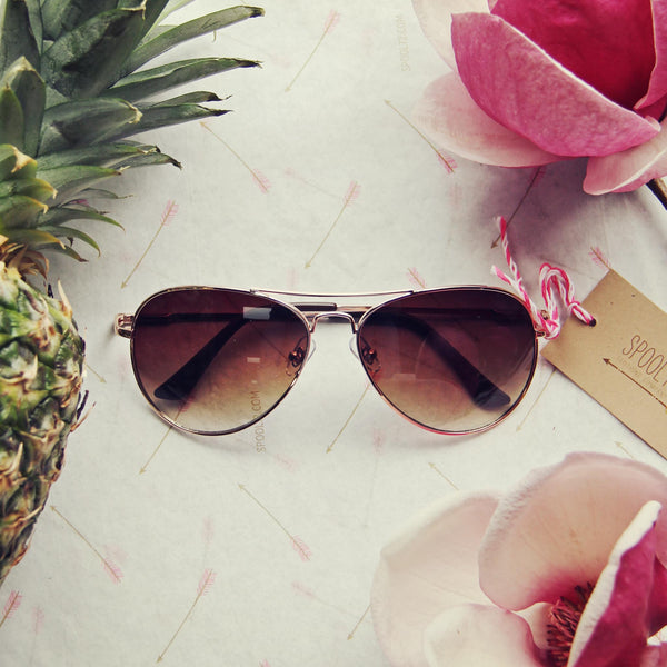 Warm Springs Sunnies: Featured Product Image