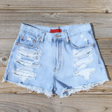 Wildwood Distressed Shorts: Alternate View #1