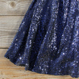 Wishing Star Party Dress in Navy: Alternate View #3
