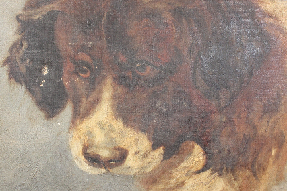 A Terrific Pair of Late 19thC English School Oils on Canvas of St. Bernard Dogs
