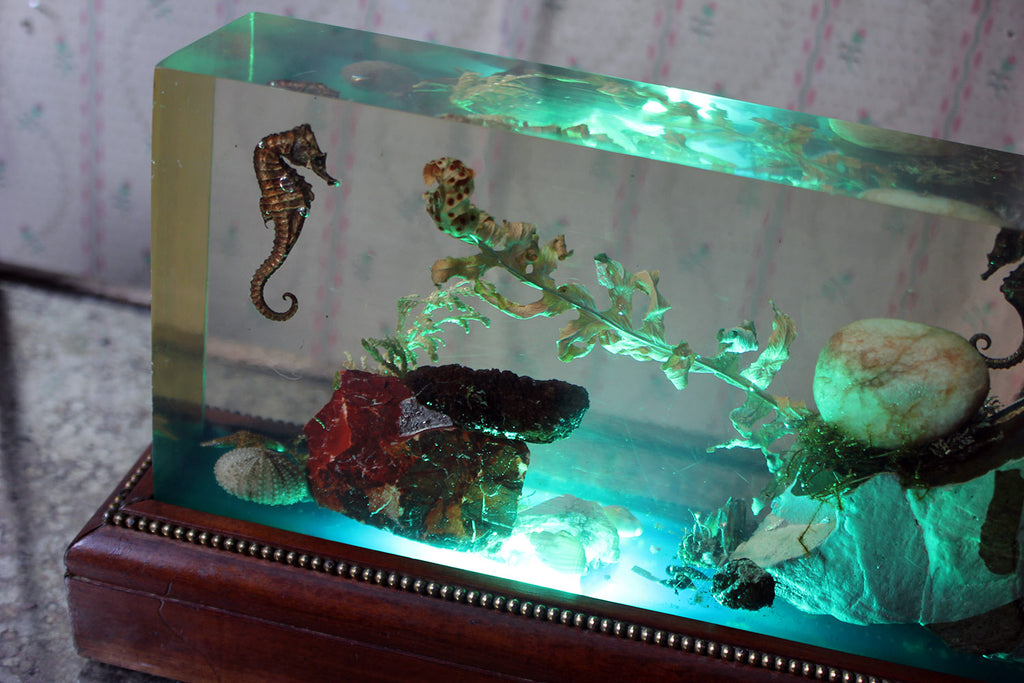 A Unique Mid-20thC Oak & Lucite Illuminated Aquarium c.1950-60