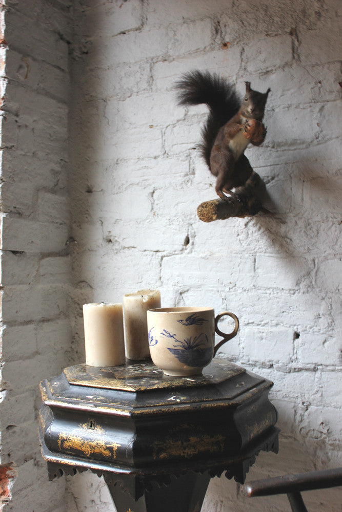 A Wall Mountable Mid 20thC Continental Taxidermy Black Squirrel