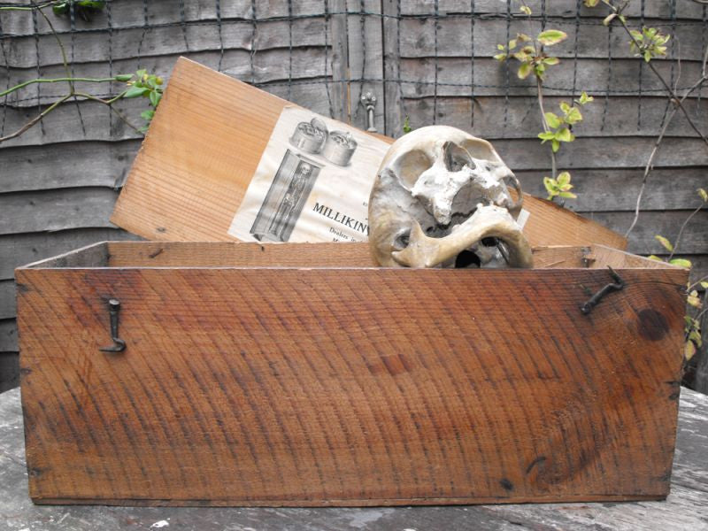 A Late 19thC Osteological Human Part Skeleton & Skull in Pine Box, Supplied by Millikin & Lawley, London