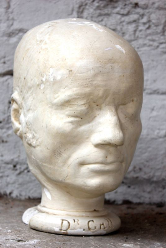 An Important c.1900 Plaster Phrenology Bust of Dr Franz Gall by Professor Joseph Millott Severn of Brighton