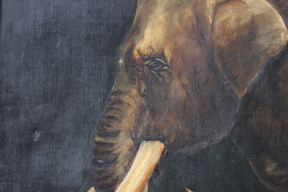A Charming Edwardian Period English School Oil on Canvas of an African Elephant Dated to 1906 by E Whiteley