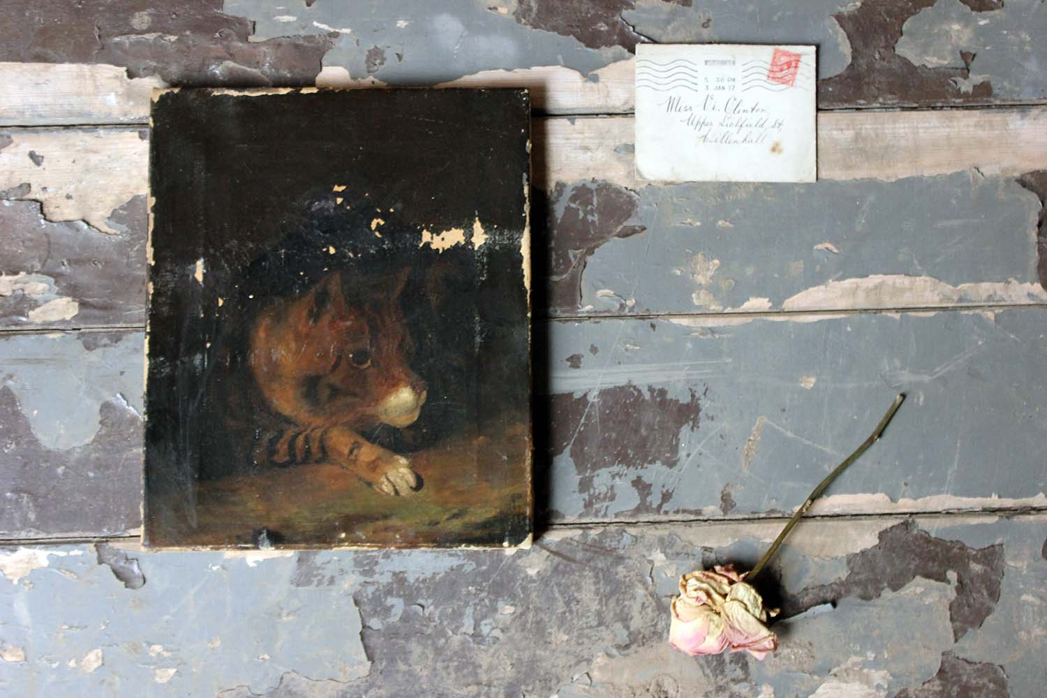 A 19thC English School Oil on Canvas Study of a Cat c.1882