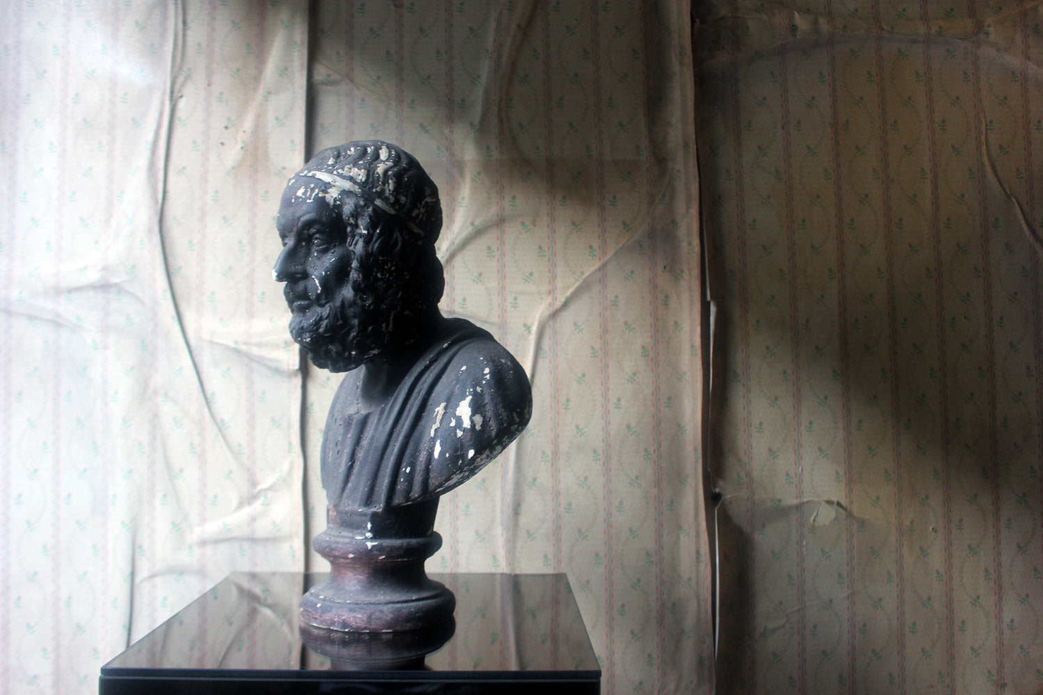 A Decorative Black Painted Plaster Portrait Bust of Homer c.1900