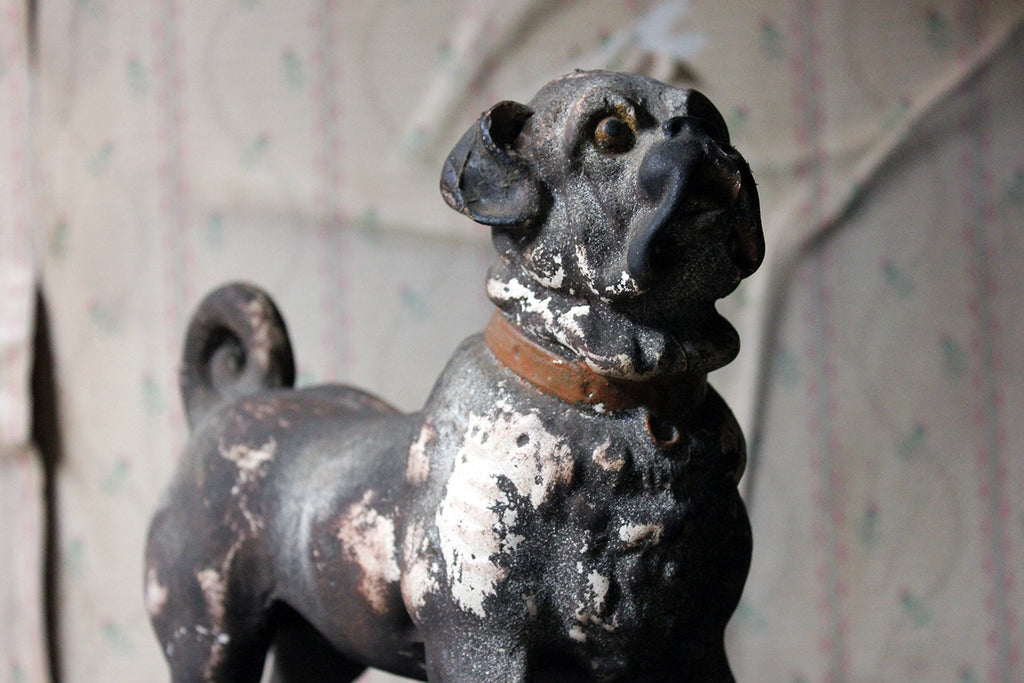 An Italian Painted Plaster Model of a Pug Dog c.1900