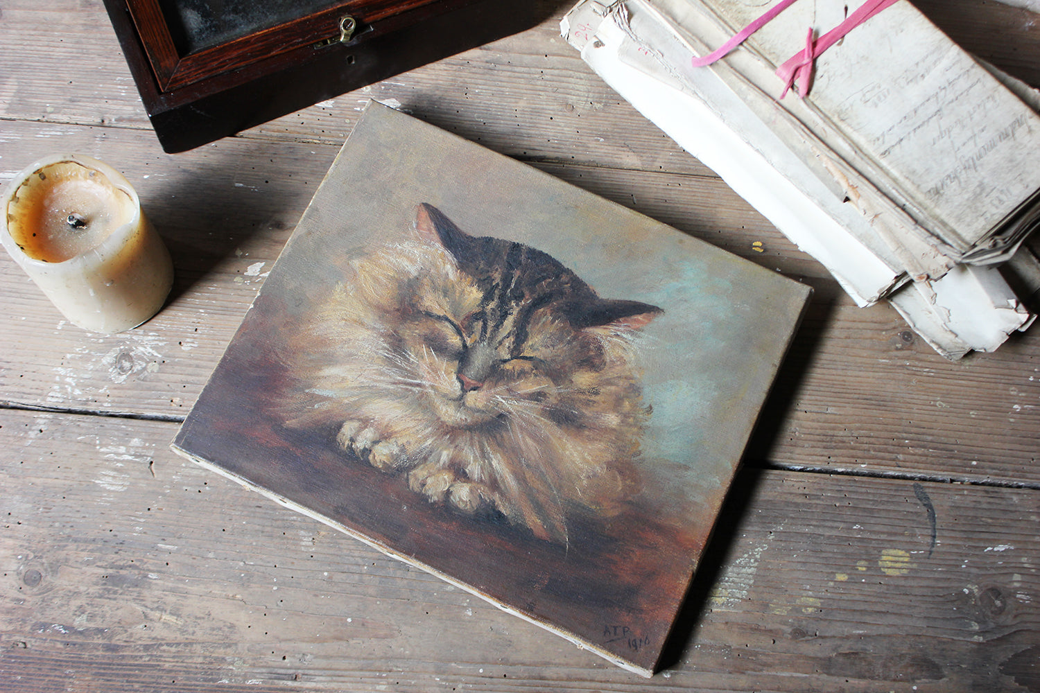 A Charming Early 20thC Oil on Canvas Portrait of a Maine Coon Tabby Cat Dated to 1916; From the Attics at Rokeby Park, County Durham