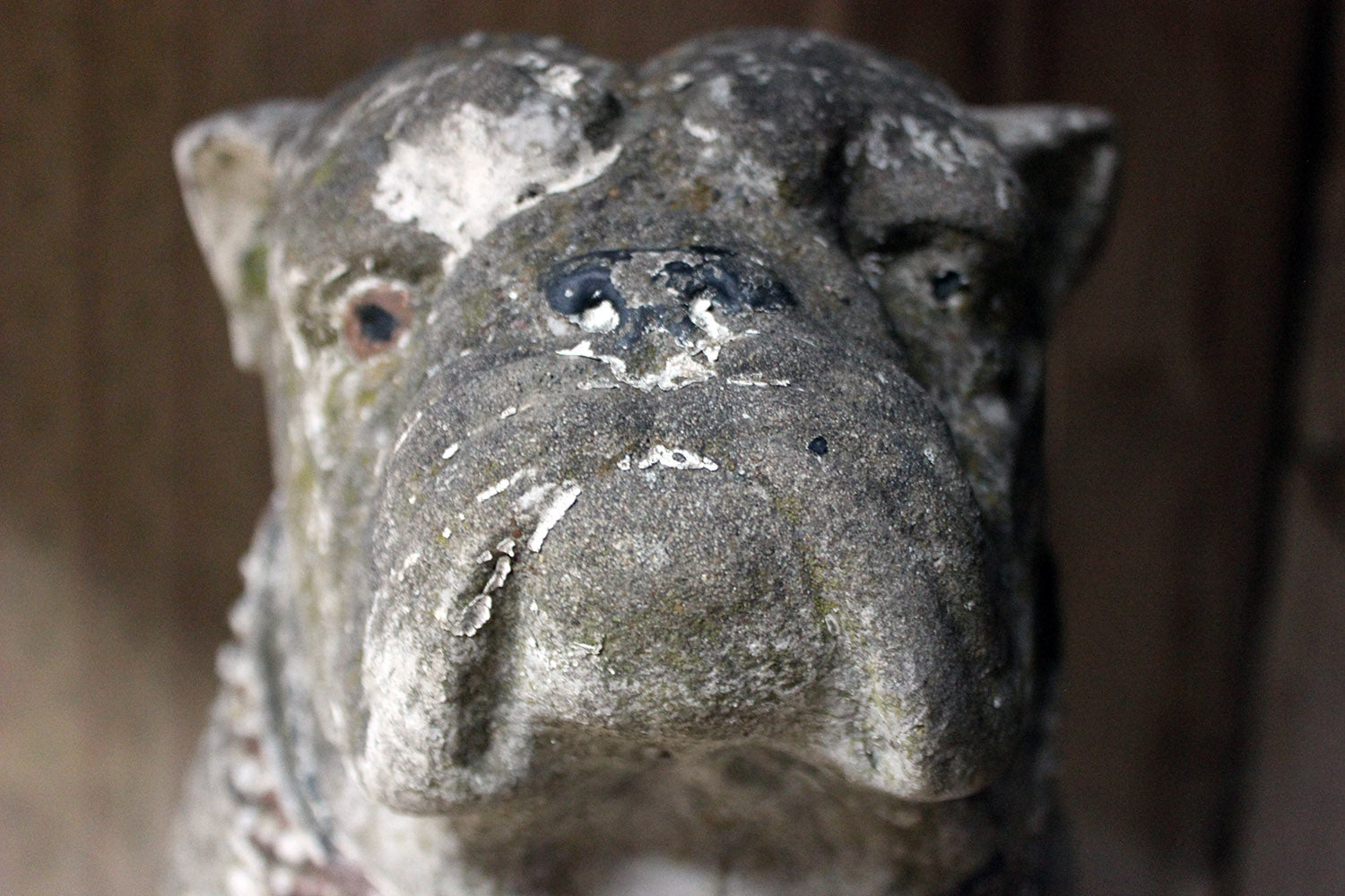 A Decorative Mid 20thC Painted Cast Stone Bulldog c.1940-50
