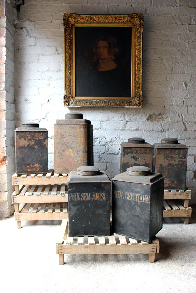 A Decorative Set of Five 19thC Black-Painted Toleware Apothecary Canisters