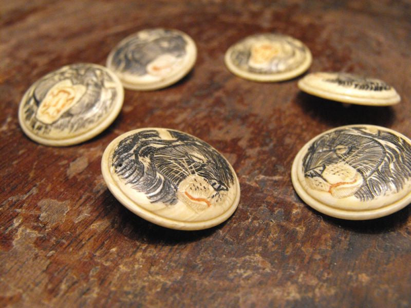 A Splendid Set of Six 1920`s Japanese Engraved & Tinted Ivory Circular Hand-Carved Buttons Each Depicting a Lion`s Head