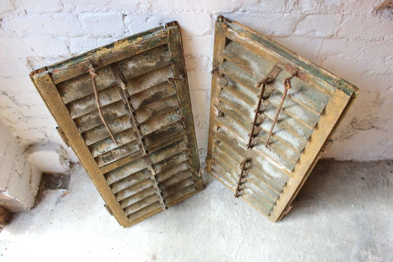A Gorgeous Pair of Painted Antique Louvre Window Shutters