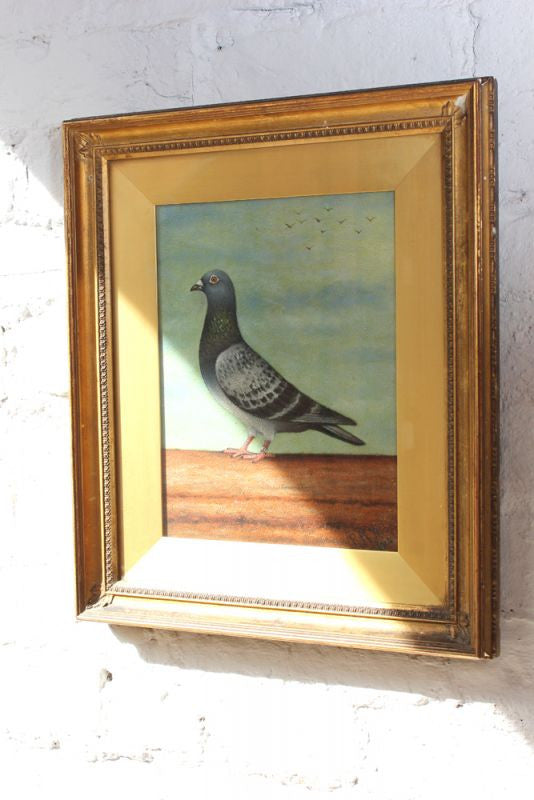 A Superb Early 20thC Oil on Board of A Racing Pigeon; R.N. Robert c.1914