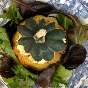 Roasted Acorn Squash stuffed with Shepherd's Pie Blue Arbor Dinner Plate