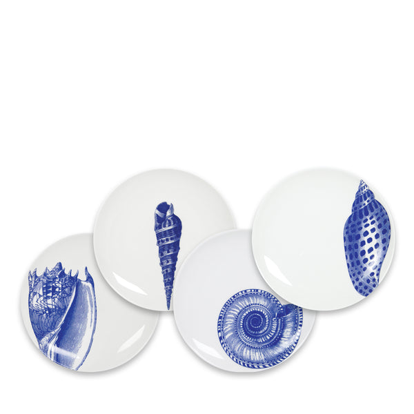 Set of 4 Mixed Shells Canapés in Blue and White