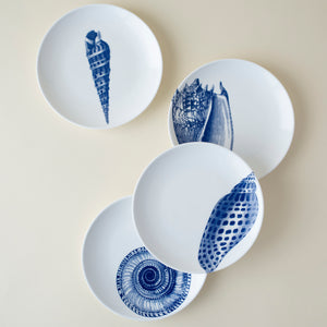 Mixed Shells Set of 4 Canape Appetizer Plates in Blue and White