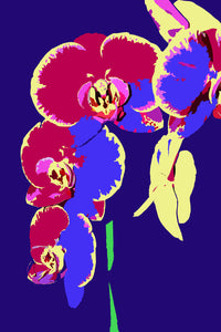 Botanical Gardens Orchid #768 Composite
