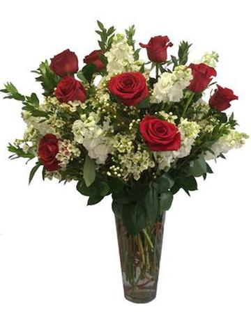 1 Dozen Rosaprima Red Roses With Stock and Waxflower