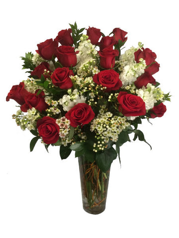 2 Dozen Rosaprima Red Roses with Stock and Waxflower