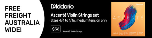 D'Addario Ascente Violin String Set 4/4 - 1/16 (pick a size)