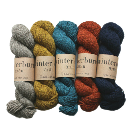 Winterburn Aran Mini Skeins