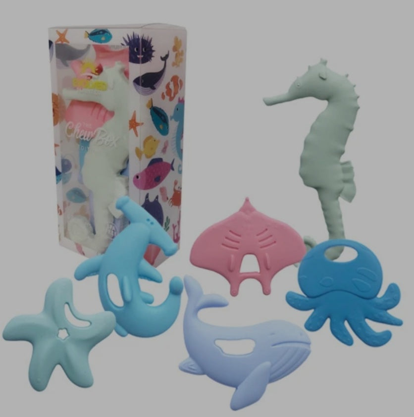 The Evolved Parent Co. The Chew Box Teethers - Sea Life