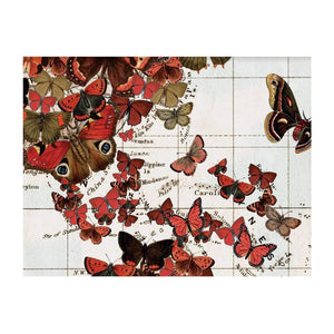 Map of the World DIY Notecard Portfolio by Wendy Gold
