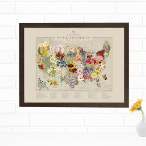 USA state flowers map